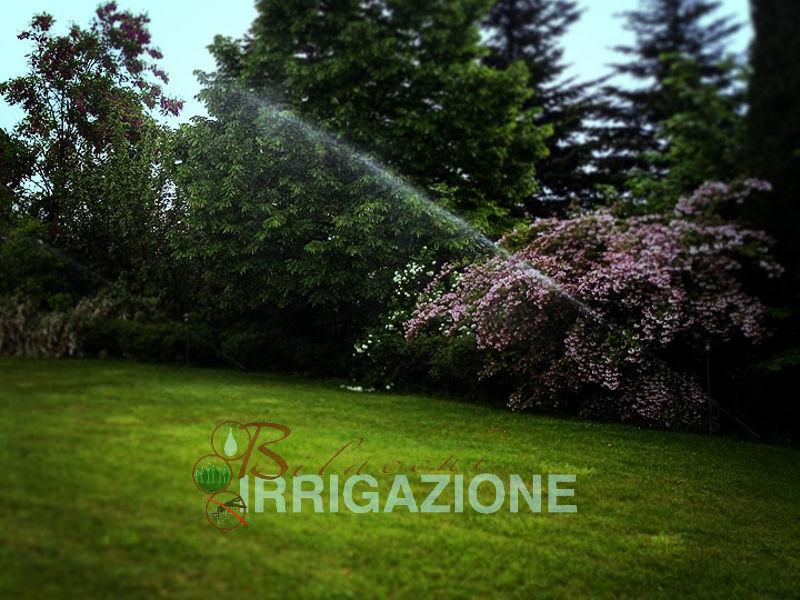 impianti di irrigazione ditta Bilacchi